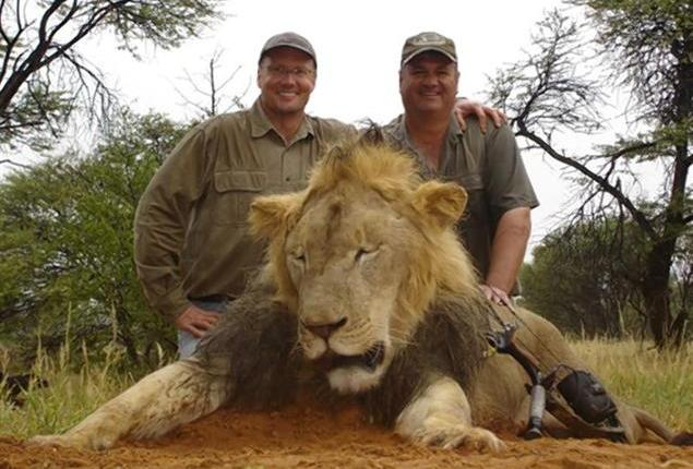 5 dentists more evil than Walter Palmer, killer of Cecil the lion