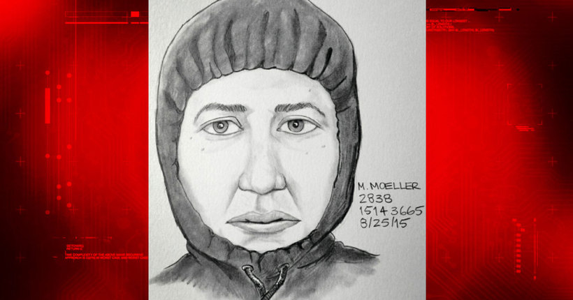 Man in van sought in attempted abduction of 10-year-old girl in San Diego County