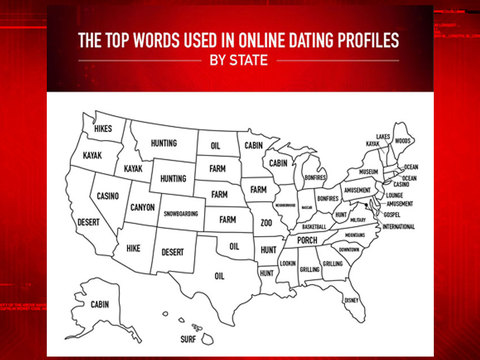 Top Words Used in Online Dating Profiles by State