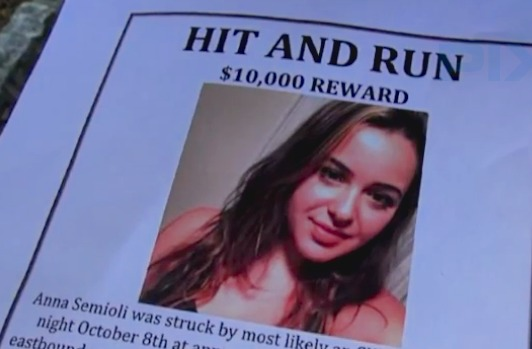 Family of woman in coma posts reward for information about hit-and-run