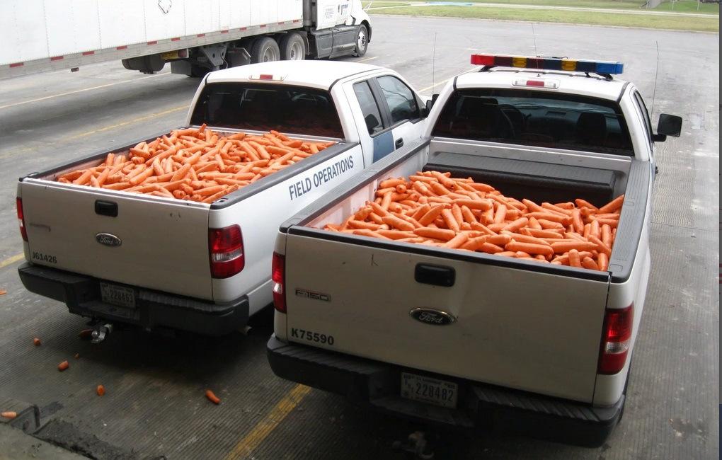 carrots-kswb