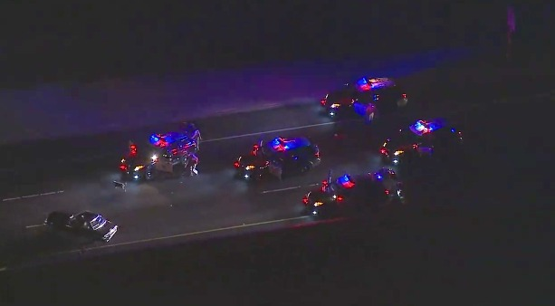 Officers corral 6 dogs following pursuit on Long Beach freeway