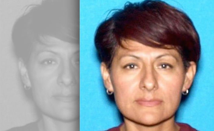 Police search for woman not seen since husband's apparent suicide