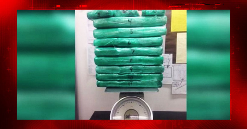 Nearly 70 pounds of cocaine found in airline employee's luggage after she flees LAX