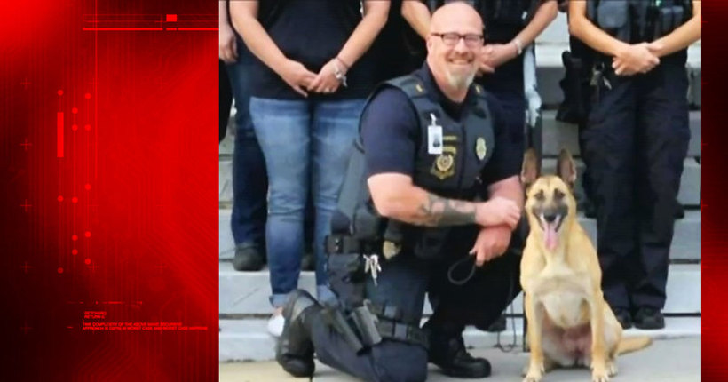 Officer in custody after K9 dies while inside patrol car for nearly 3 hours