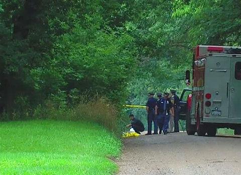 Female jogger fatally shot; light-colored sedan sought