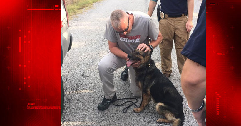 Wounded K-9 officer found alive 2 days after shooting that killed sheriff's deputy