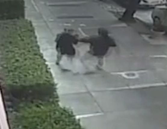 Video: Man who violently beat woman near San Francisco park still on the loose