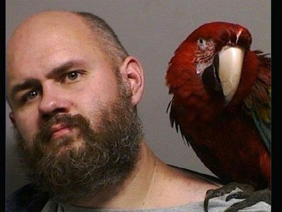 The heartwarming tale of how a parrot ended up in this mugshot