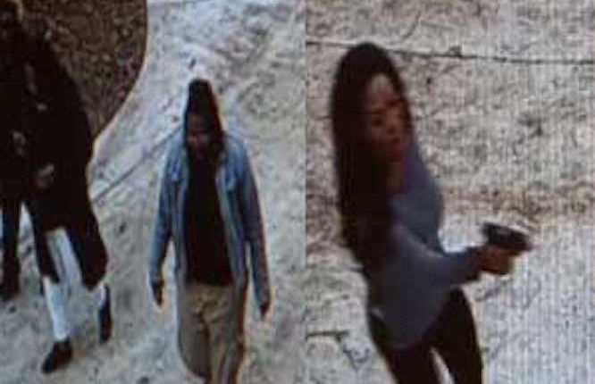 'Real Housewives of Atlanta' star pulls gun on trespassers