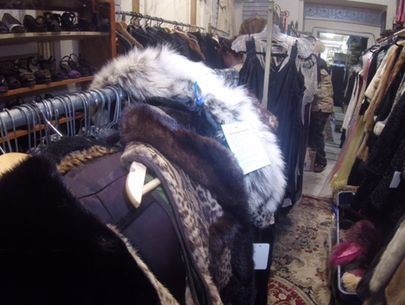 Store owner charged with selling endangered species furs, body parts