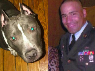 Former Army Ranger attacked in Bronx, service dog stolen