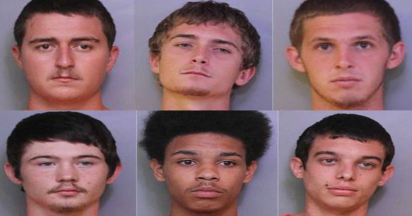 'Bovine Bandits' busted for stealing, selling cows, deputies say