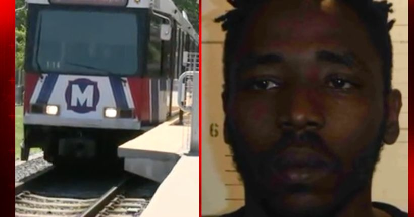 Man accused of stomping cat to death on MetroLink platform