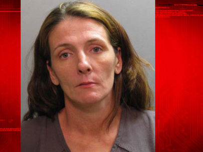 Woman accused of hiding infant remains under home pleads guilty