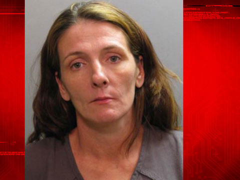 Woman accused of concealing babies' deaths arrested