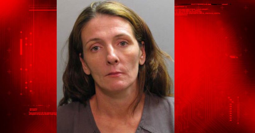 N.C. woman accused of hiding infant remains under home pleads guilty