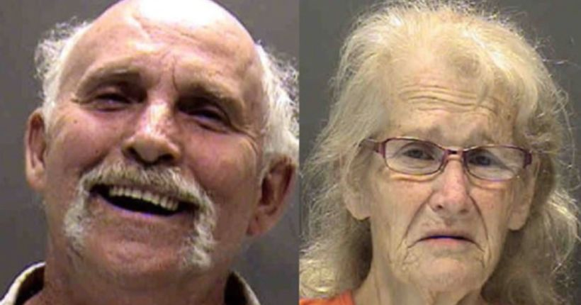 Couple arrested after blind, deaf dog found chained and covered with maggots
