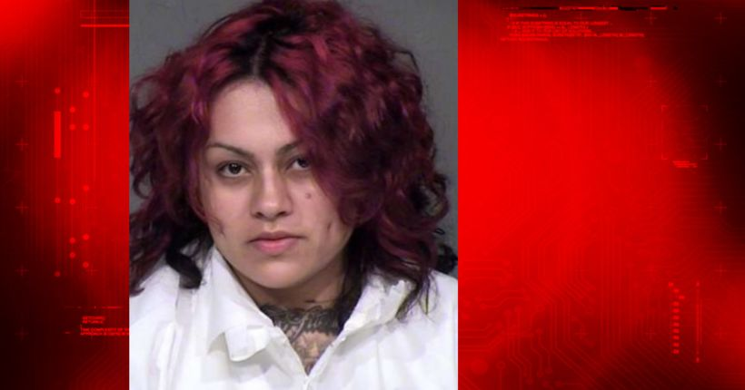 Mother sentenced to life terms for killing twin 2-year-olds