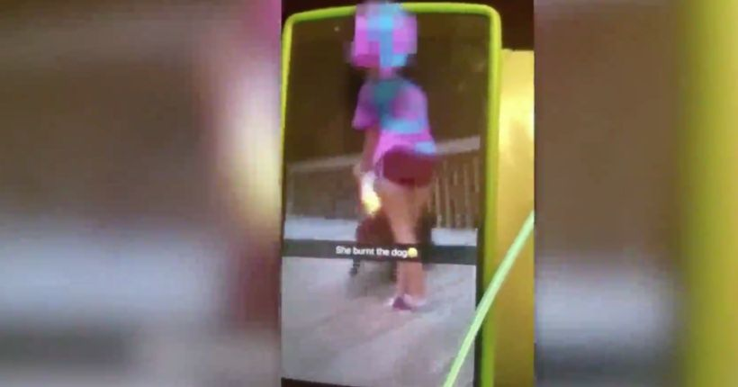 Video on social media shows teen lighting flame at dog