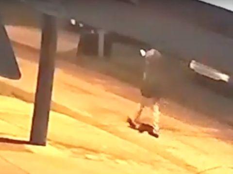 Serial Killer? Tampa Police increase patrols after 3 homicides in 2 weeks