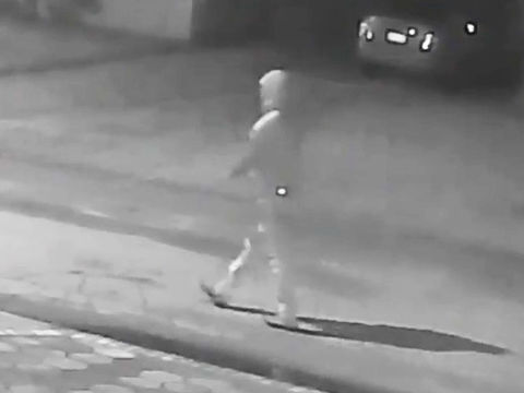 Seminole Heights homicides: Tampa police release additional video