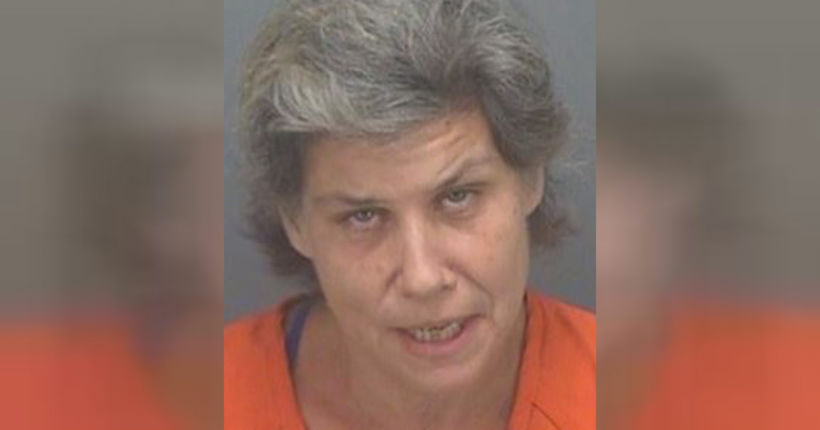 Police: Florida woman offered sex to undercover cop in exchange for Beanie Baby