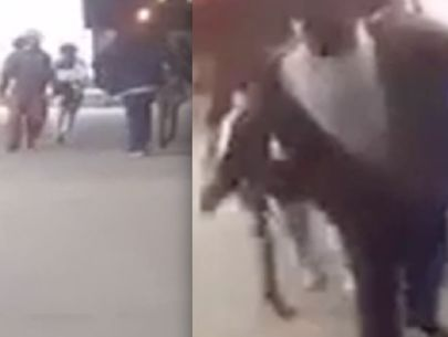 Video: Man fights off group in Snapchat video before being fatally shot