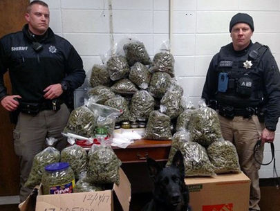 Elderly couple told cops 60 lbs. of pot was 'Christmas presents'