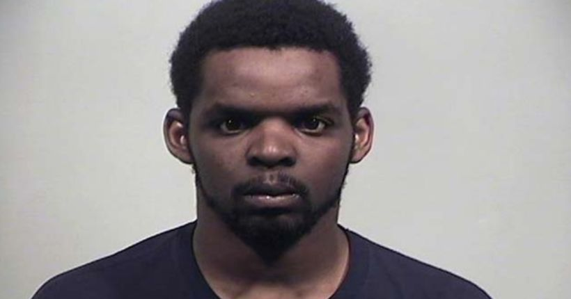 Ohio man sentenced for kicking, killing puppy