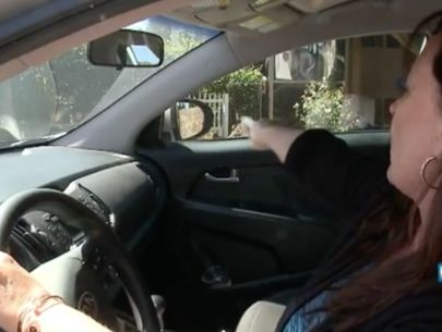 Woman ticketed for honking horn at police car