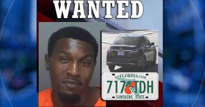 Florida deputies search for man who reportedly pushed woman out of moving car at 75 mph