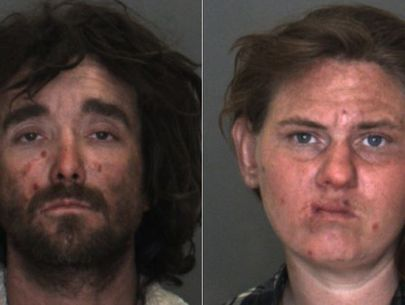 Couple accused of sexually abusing son may have committed acts on dogs