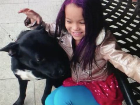 Family: 9-year-old's dog stolen from in front of supermarket