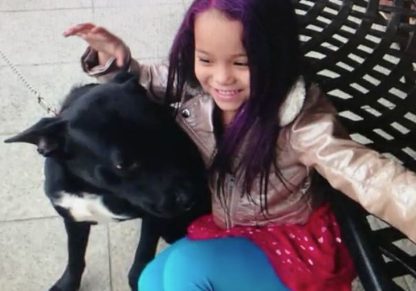 Bronx family say 9-year-old daughter's dog was stolen from in front of supermarket