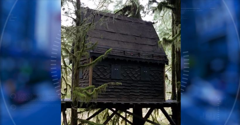 Man charged after child porn found in 'gingerbread treehouse' in Snoqualmie National Forest