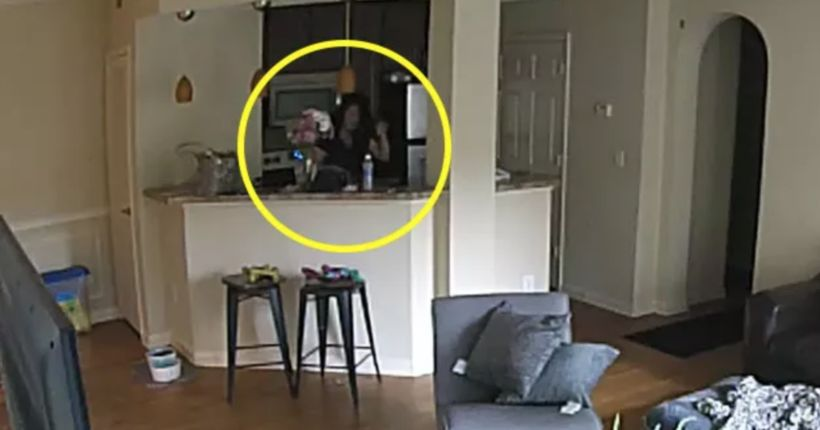 Woman hired to watch dog caught urinating in owner's pot