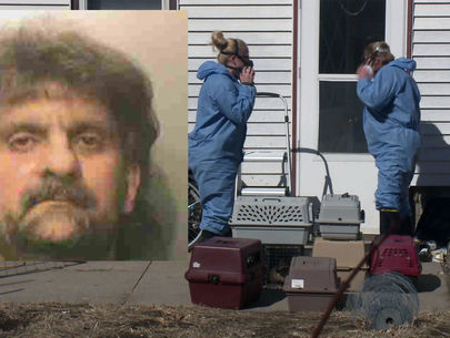 Police: Cat hoarder arrested, faces charges of animal neglect