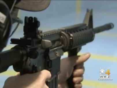 Assault weapons ban doesn't violate 2nd amendment: judge