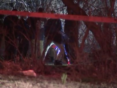Police identify woman whose remains were found in Brooklyn park