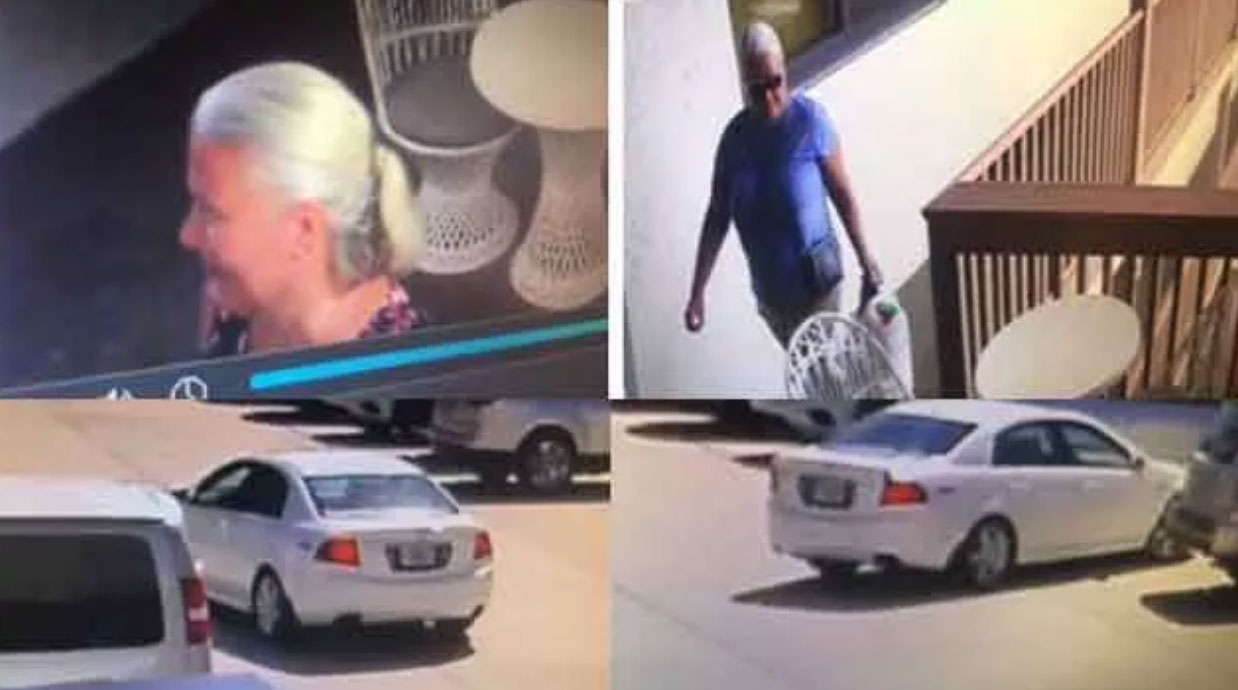 lori-reiss-suspect-surveillance-wbbh