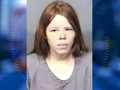 Woman gives birth on toilet, throws twin in trash, police say