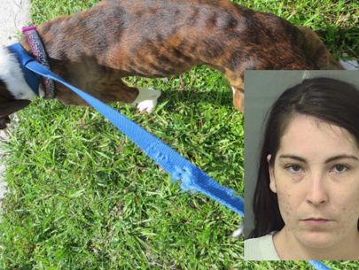 Woman accused of abandoning emaciated dog after eviction
