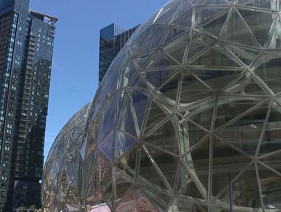 Woman accused of throwing rock at Amazon Spheres released