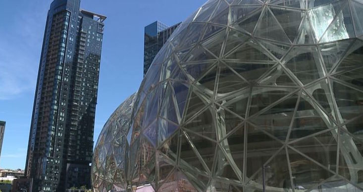 Woman accused of throwing rock at Amazon Spheres released on own recognizance