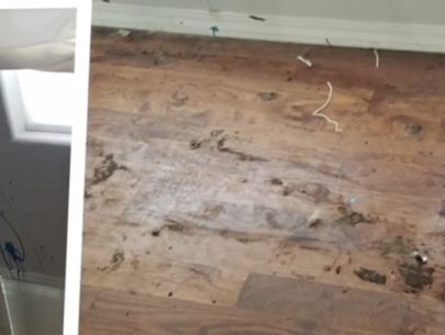 Couple says would-be homebuyers smeared feces in home