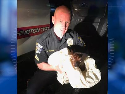 Cop delivers baby deer by emergency C-section