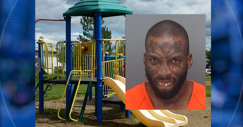 Man arrested after telling children at playground where babies come from