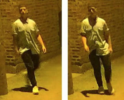Man broke into 2 homes in Lincoln Park, sexually abused sleeping girls, police say