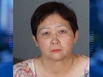 Babysitter allegedly leaves child in 120-degree van for 2 hours: Police